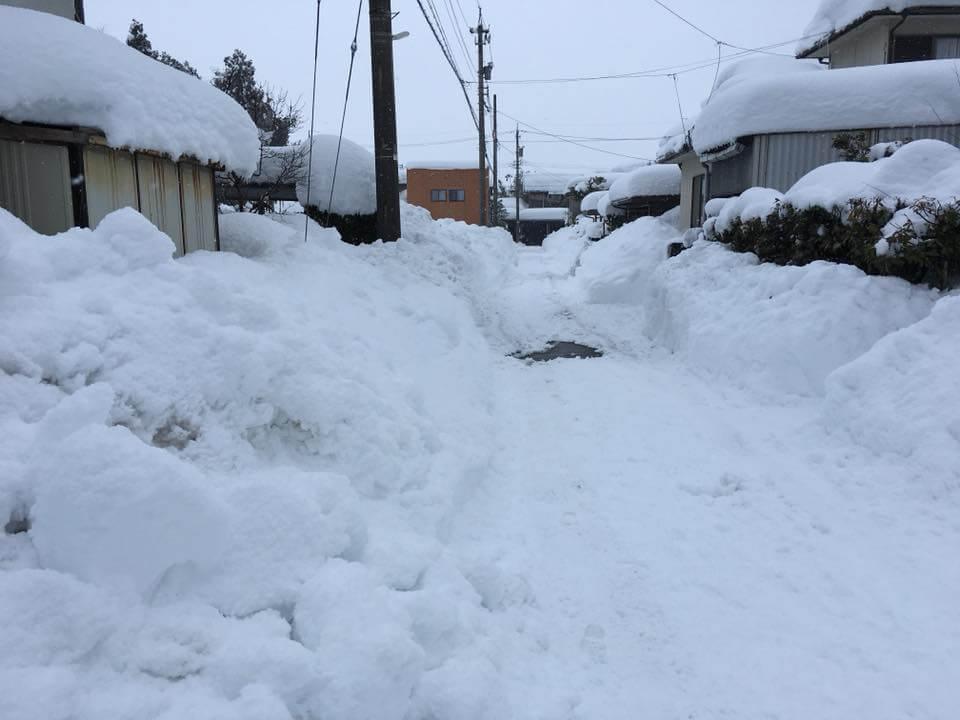 江尻が丘の雪の様子