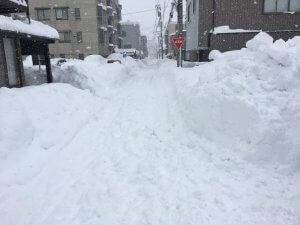 雪だらけになった近所の道路の様子
