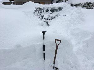 雪に埋もれた僕の車の様子