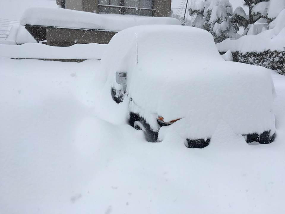 朝の僕の車の様子