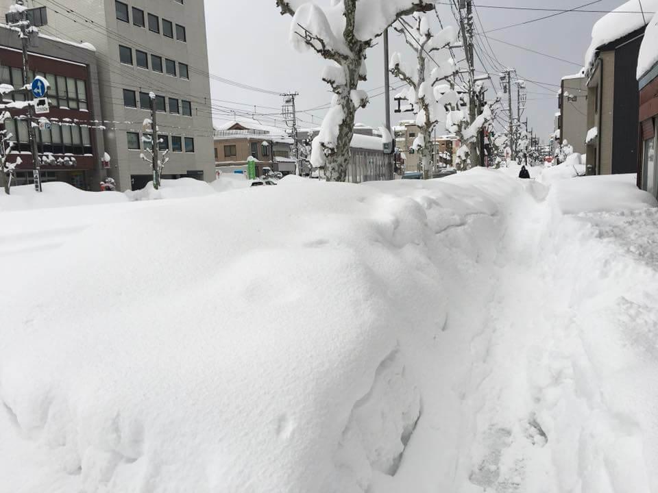 福井のフェニックス通りがすっかり雪道になってる様子